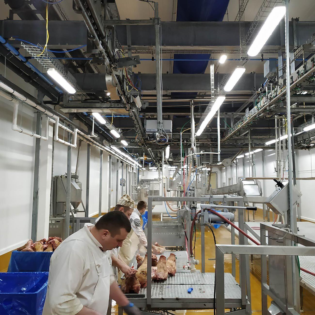 БелДан заказал светильники для мясо-молочных предприятий ledz e-Industry и e-Slim. Служат более 20 лет. Экономят 80% затрат на электроэнергию. Хотите такие светильники? Звоните нам!