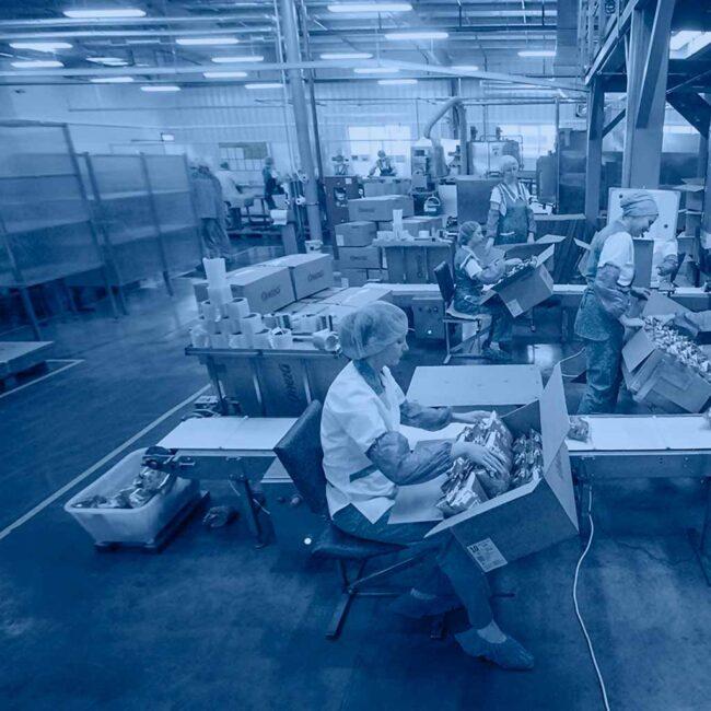 Онега заказала светодиодные светильники для пищевого производства ledz e-Industry. Светоотдача 172лм/Вт. Ресурс свыше 20 лет. Снизили затраты на 80%. Хотите такие светильники? Звоните нам!